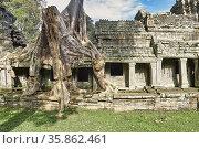 Preah Kahn temple. Siem Reap. Cambodia. Стоковое фото, фотограф Marco Brivio / age Fotostock / Фотобанк Лори