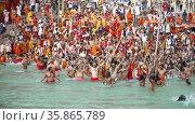 A Dip of Spirituality and faith, Maha Kumbh 2021. Редакционное видео, видеограф Devendra Rawat / Фотобанк Лори