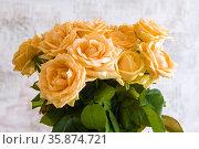 Букет кремовых чайных роз крупным планом. Стоковое фото, фотограф Виктор Карасев / Фотобанк Лори