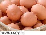 Egg. Стоковое фото, агентство Ingram Publishing / Фотобанк Лори