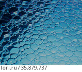 Colourful water bubble. Стоковое фото, агентство Ingram Publishing / Фотобанк Лори