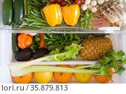 Fridge full of fruit and vegetables. Стоковое фото, агентство Ingram Publishing / Фотобанк Лори