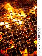 Barbeque. Стоковое фото, агентство Ingram Publishing / Фотобанк Лори
