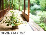Flower arrangement. Стоковое фото, агентство Ingram Publishing / Фотобанк Лори
