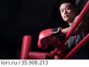Portrait of male boxer resting his elbows on the ring side, looking at camera, low angle view. Стоковое фото, агентство Ingram Publishing / Фотобанк Лори