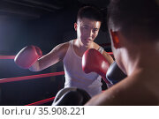 Over the shoulder view of two male boxers fighting in the boxing ring in Beijing, China. Стоковое фото, агентство Ingram Publishing / Фотобанк Лори