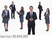 Medium group of smiling business people, portrait, full length, studio shot. Стоковое фото, агентство Ingram Publishing / Фотобанк Лори