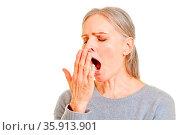 Müde ältere Frau beim Gähnen halt ihre Hand vor den Mund. Стоковое фото, фотограф Zoonar.com/Robert Kneschke / age Fotostock / Фотобанк Лори