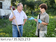 Man and woman gardeners with shovel and bucket while gardening. Стоковое фото, фотограф Татьяна Яцевич / Фотобанк Лори