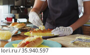 Mid section of african american woman wearing apron putting grated cheese over hot dog in food truck. Стоковое видео, агентство Wavebreak Media / Фотобанк Лори