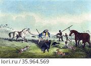 The dead hog by Samuel Howitt, 1765?-1822, artist. Редакционное фото, агентство World History Archive / Фотобанк Лори