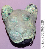 Copper alloy heads of two lions or cubs. Редакционное фото, агентство World History Archive / Фотобанк Лори