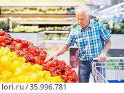 old age man choosing bell pepper in supermarket. Стоковое фото, фотограф Татьяна Яцевич / Фотобанк Лори