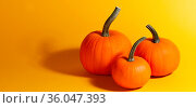 Holiday halloween background with pumpkins on orange, copy space for... Стоковое фото, фотограф Zoonar.com/Ivan Mikhaylov / easy Fotostock / Фотобанк Лори