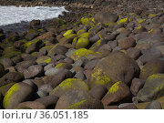 Gran Canaria, landscape of steep eroded west coast in Agaete municipality, dark volcanic boulders of Playa del Risco. Стоковое фото, фотограф Tamara Kulikova / Фотобанк Лори