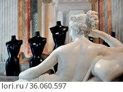 The Five grecian nudes in the room of Poalina Borghese by Canova ... Редакционное фото, фотограф Maria Laura Antonelli / AGF/Maria Laura Antonelli / age Fotostock / Фотобанк Лори