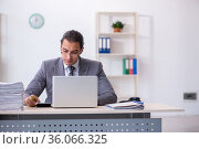 Young male bookkeeper calculating expences. Стоковое фото, фотограф Elnur / Фотобанк Лори