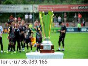 Da ist das Ding: Der Meisterpokal der Fußball-Regionalliga Südwest... Стоковое фото, фотограф Zoonar.com/Joachim Hahne / age Fotostock / Фотобанк Лори