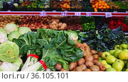 Large assortment of fresh colorful fruits and vegetables in wicker trays on shelves in supermarket. Стоковое видео, видеограф Яков Филимонов / Фотобанк Лори