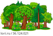 Cartoon Illustration of mixed Forest with Deciduous and Coniferous... Стоковое фото, фотограф Zoonar.com/Igor Zakowski / easy Fotostock / Фотобанк Лори