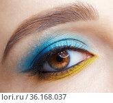 Human female eye with blue smoky eyes shadows and yellow liner. Стоковое фото, фотограф Serg Zastavkin / Фотобанк Лори
