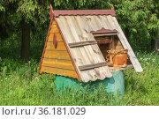 Россия, колодец в деревне. Стоковое фото, фотограф glokaya_kuzdra / Фотобанк Лори