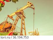 Oil pump jack on a oil field. Extraction of oil. Petroleum concept... Стоковое фото, фотограф Zoonar.com/BASHTA / easy Fotostock / Фотобанк Лори