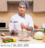Young chef working in the kitchen. Стоковое фото, фотограф Elnur / Фотобанк Лори