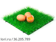 Braune Eier auf einer dekorativen Grasmatte. Стоковое фото, фотограф Zoonar.com/Birgit Reitz-Hofmann / age Fotostock / Фотобанк Лори