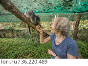 Wildlife carer Margit Cianelli with young Lumholtz's tree... Стоковое фото, фотограф Jurgen Freund / Nature Picture Library / Фотобанк Лори