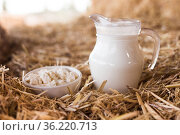 dairy products against the background of hay. Стоковое фото, фотограф Татьяна Яцевич / Фотобанк Лори