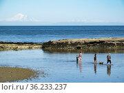 Dionisio Point on Galiano Island, Gulf Islands, British Columbia, ... Стоковое фото, фотограф Douglas Williams / age Fotostock / Фотобанк Лори