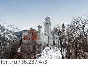 View of Neuschwanstein Castle in the mountains of Bavaria in winter. Germany (2012 год). Стоковое фото, фотограф Наталья Волкова / Фотобанк Лори