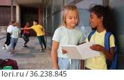 Smiling tween girls friendly discussing outdoors in schoolyard during break in lessons. Стоковое видео, видеограф Яков Филимонов / Фотобанк Лори