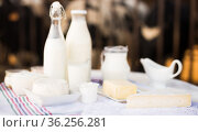 milk, cottage cheese, cream, cheese on table against background of cows. Стоковое фото, фотограф Татьяна Яцевич / Фотобанк Лори