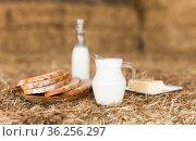 Rustic breakfast of milk, fresh wheat bread and butter in the hayloft. Стоковое фото, фотограф Татьяна Яцевич / Фотобанк Лори