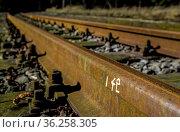 ZON-10745771. Стоковое фото, фотограф Zoonar.com/Karl Heinz Spremberg / age Fotostock / Фотобанк Лори