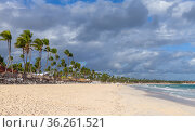 Coastal Caribbean landscape. Sandy Atlantic Ocean coast (2020 год). Стоковое фото, фотограф EugeneSergeev / Фотобанк Лори