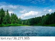 Beautiful landscape summer river with wooded banks. Стоковое фото, фотограф Евгений Харитонов / Фотобанк Лори