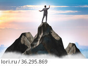 Businessman at the top of mountain in career concept. Стоковое фото, фотограф Elnur / Фотобанк Лори