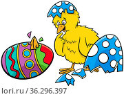 Cartoon illustration of little yellow chick hatched from Easter colored... Стоковое фото, фотограф Zoonar.com/Igor Zakowski / easy Fotostock / Фотобанк Лори