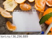 leaf notebook with tangerines. Стоковое фото, фотограф Яков Филимонов / Фотобанк Лори