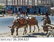 Strassenszene in der Kleinstadt Agula, Tigray, Äthiopien / Street... Стоковое фото, фотограф Zoonar.com/Pant / age Fotostock / Фотобанк Лори