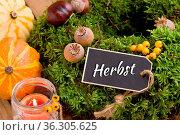 Herbstdeko - Mooskranz mit Schriftzug Herbst. Стоковое фото, фотограф Zoonar.com/Petra Schüller / easy Fotostock / Фотобанк Лори