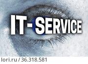 IT Service auge mit matrix blickt auf betrachter konzept. Стоковое фото, фотограф Zoonar.com/WSF / easy Fotostock / Фотобанк Лори