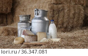 Table with different dairy products and metal can on dark wooden table at a milk factory. Стоковое видео, видеограф Яков Филимонов / Фотобанк Лори