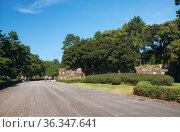 Promenade trail along the stone wall of old Edo castle in the Tokyo Imperial Palace. Tokyo. Japan (2019 год). Стоковое фото, фотограф Serg Zastavkin / Фотобанк Лори