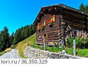 Schweizer Chalet an einer Bergstarsse, St. Antönien, Prättigau, Graubünden... Стоковое фото, фотограф Zoonar.com/Pant / age Fotostock / Фотобанк Лори