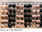 View Of Female Woman Lingerie On Hanger In Store Of Shopping Center. Стоковое фото, фотограф Ryhor Bruyeu / easy Fotostock / Фотобанк Лори