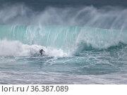 Surfer in einer Welle, Nazare, Portugal, Europa / Surfer on surf ... Стоковое фото, фотограф Zoonar.com/Stefan Ernst / age Fotostock / Фотобанк Лори